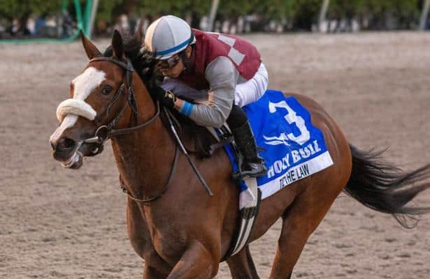 Florida Derby 2020: Odds and analysis for Saturday's race