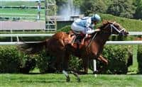 Top Tier Lass breaks maiden at Saratoga.