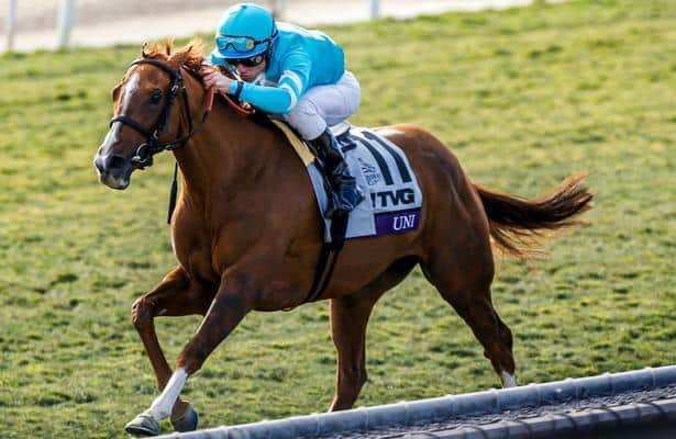 First look: Just a Game leads 4 graded stakes at Belmont