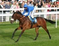 /horse/Vale Of York