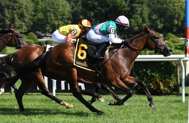Matriarch Stakes 2020 guide: Odds and analysis