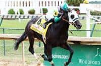 Warrior's Club wins 2016 Spendthrift Stallion