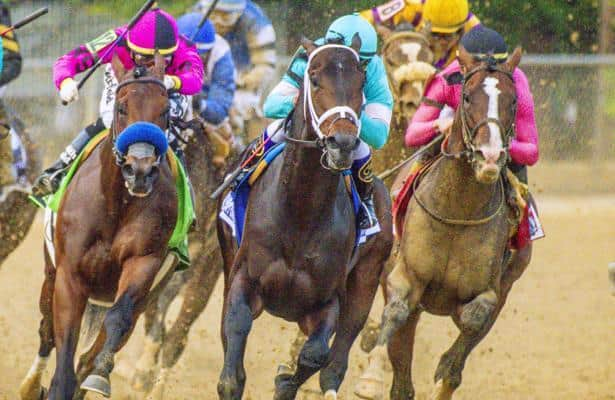 After 'unbelievable' Preakness, Warrior's Charge set for summer
