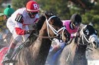 We Miss Artie and jockey John Velazquez win the Horseshoe Casino Spiral Stakes, 03-22-14, for trainer Todd Pletcher and owners Ken and Sarah Ramsey