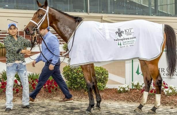 3-year-old pedigrees: Wells Bayou boasts classic bloodlines