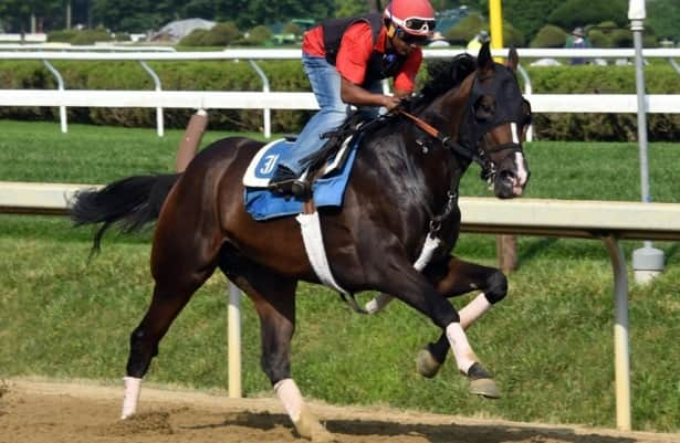 Head to Head: Handicapping the 2021 Jim Dandy Stakes