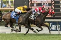 What a View wins 2018 American Stakes