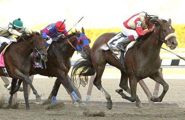 "Belmont Stakes Analysis: Be Prepared for a ""Wicked"" Race"
