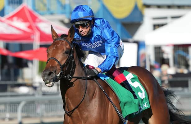 Horses to Watch: 6 worth your attention, 1 to drop