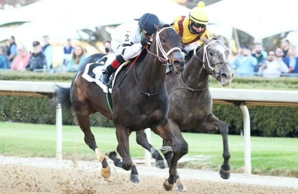Will's Secret wins a second Kentucky Oaks prep in Honeybee