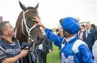 /horse/Winx