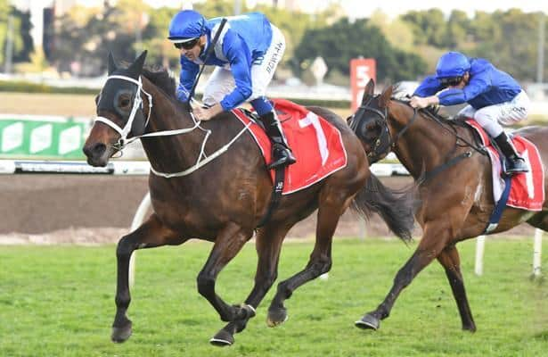 Cox plate 2021 betting websites betting sites new mexico
