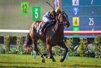 With Honors wins 2016 Del Mar Juvenile Fillies Turf