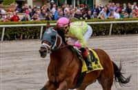 World of Trouble_horse_Gulfstream Park Turf Sprint 2019_615x400