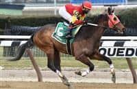 http://www.horseracingnation.com/horse/Sunny_Ridge_1