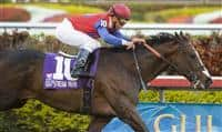 You And I Forever Captures the Gulfstream Park Handicap