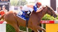 Zagora Wins 2012 Gallorette