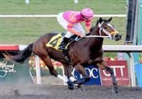 November 22, 2009.November 22, 2009.Bickersons, riden by Joseph Talamo wins The Moccasin Stakes at Hollywood Park, Inglewood, California