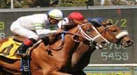July 16, 2011.Nereid riden by Joseph Talamo, and Cambina riden by Martin Garcia finish in a dead heat in the American Oaks Stakes at Hollywood Park, Inglewood, CA