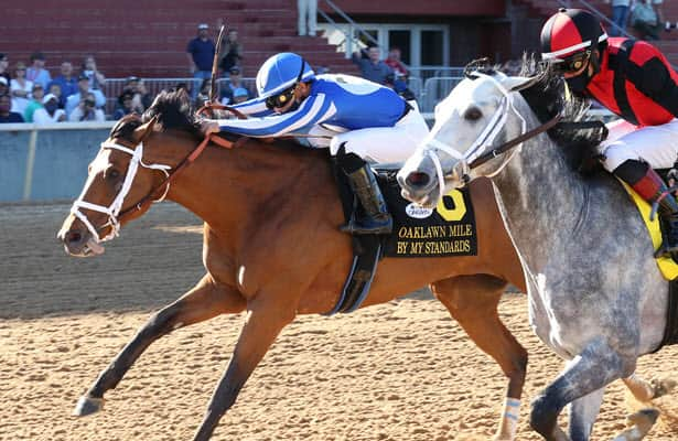 By My Standards nails Rushie on the wire in Oaklawn Mile