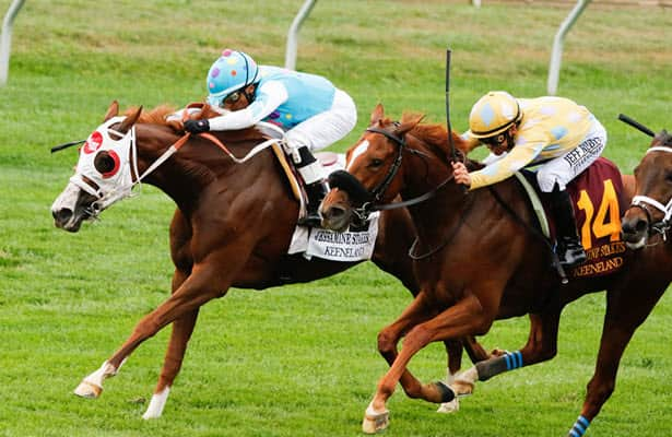 17-1 long shot wins Jessamine and Breeders' Cup berth