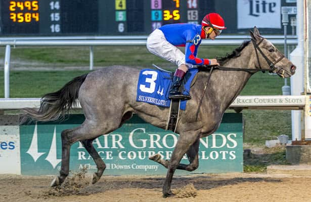 Charlie's Penny shines bright in Silverbulletday