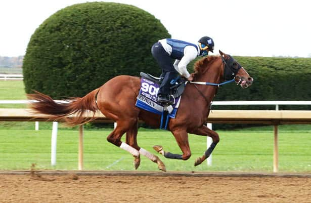 Head to Head: Handicapping the 2021 Smarty Jones Stakes