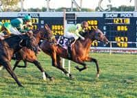 Kids Rule winning a Maiden Special Weight race at Arlington Park.