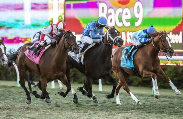 Domestic Spending gets up late in Hollywood Derby thriller