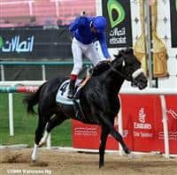 Two Step Salsa wins the 2009 Godolphin Mile G2.