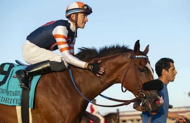 Pedigree Stars: 2021 Del Mar Debutante Stakes