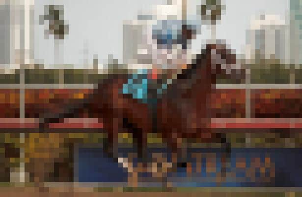 Kentucky Derby 2013: Bet Against This Favorite