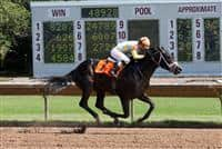 Force wins the 2015 NY Derby.