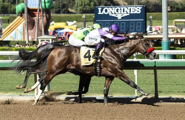 O'Neill to enter Fore Left in Belmont Stakes