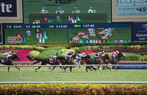 Opening today: See highlights of Gulfstream Park winter
