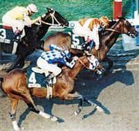/horse/Bet Twice