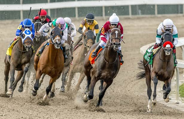 How Hot Rod Charlie's pedigree positions him for the Ky. Derby