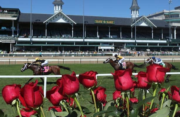 Horse betting odds meanings of flowers betting odds nfl draft