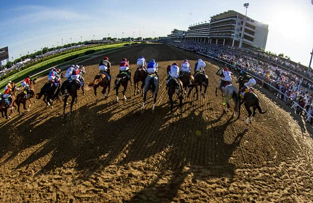 Alumni report: See the latest on 2019-21 Kentucky Derby horses