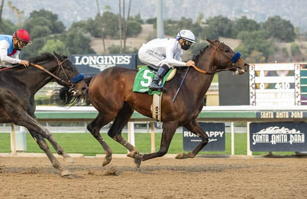 West Coast scouting report: Baffert, O'Neill continue to lead