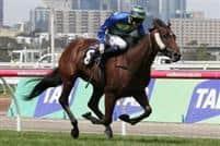 /horse/Jameka