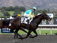 Pioneerof the Nile and Garrett Gomez capture the Robert B. Lewis Stakes at Santa Anita