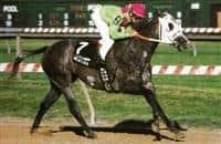 Meafara while racing