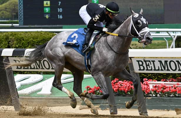 Ny Traffic crushes New York-breds in 1st start since Preakness