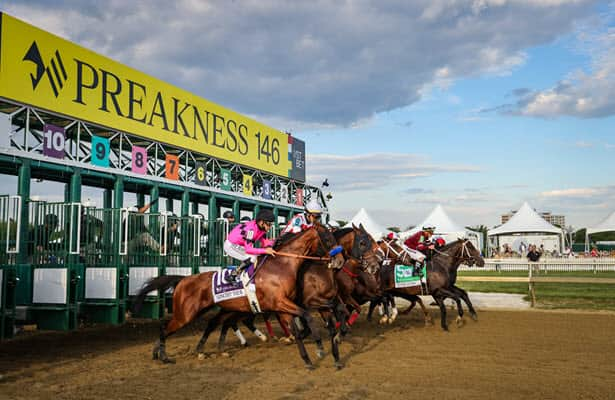 Connections of Preakness also-rans reflect on the results