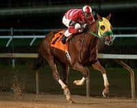 Rapid Redux wins 20th in a row.