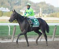 /horse/Ria Antonia