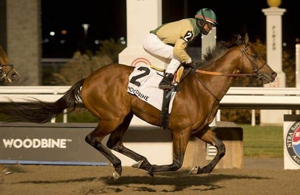 Horses to watch: Casse star Ride a Comet returns to turf