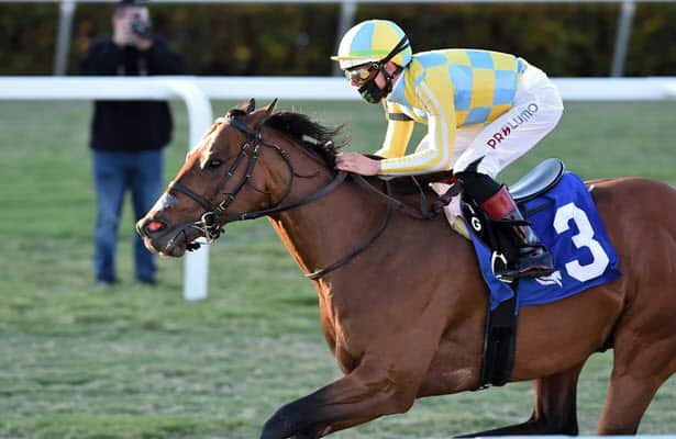 Horses to Watch: 12 names to know for exciting weekend