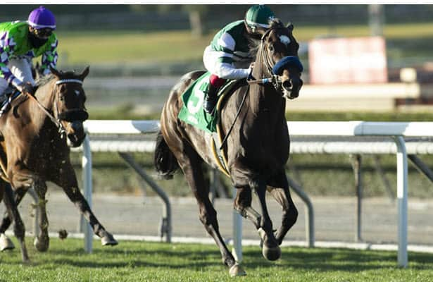 5 long shots that could be Kentucky Derby contenders